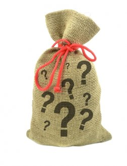 photodune-3393975-money-bag-with-question-marks-xs